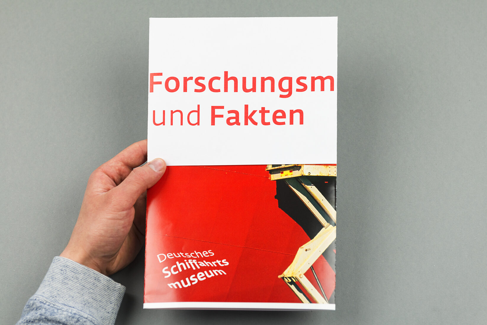 Corporate Identity DSM Broschüre Flyer Fakten Poster 1