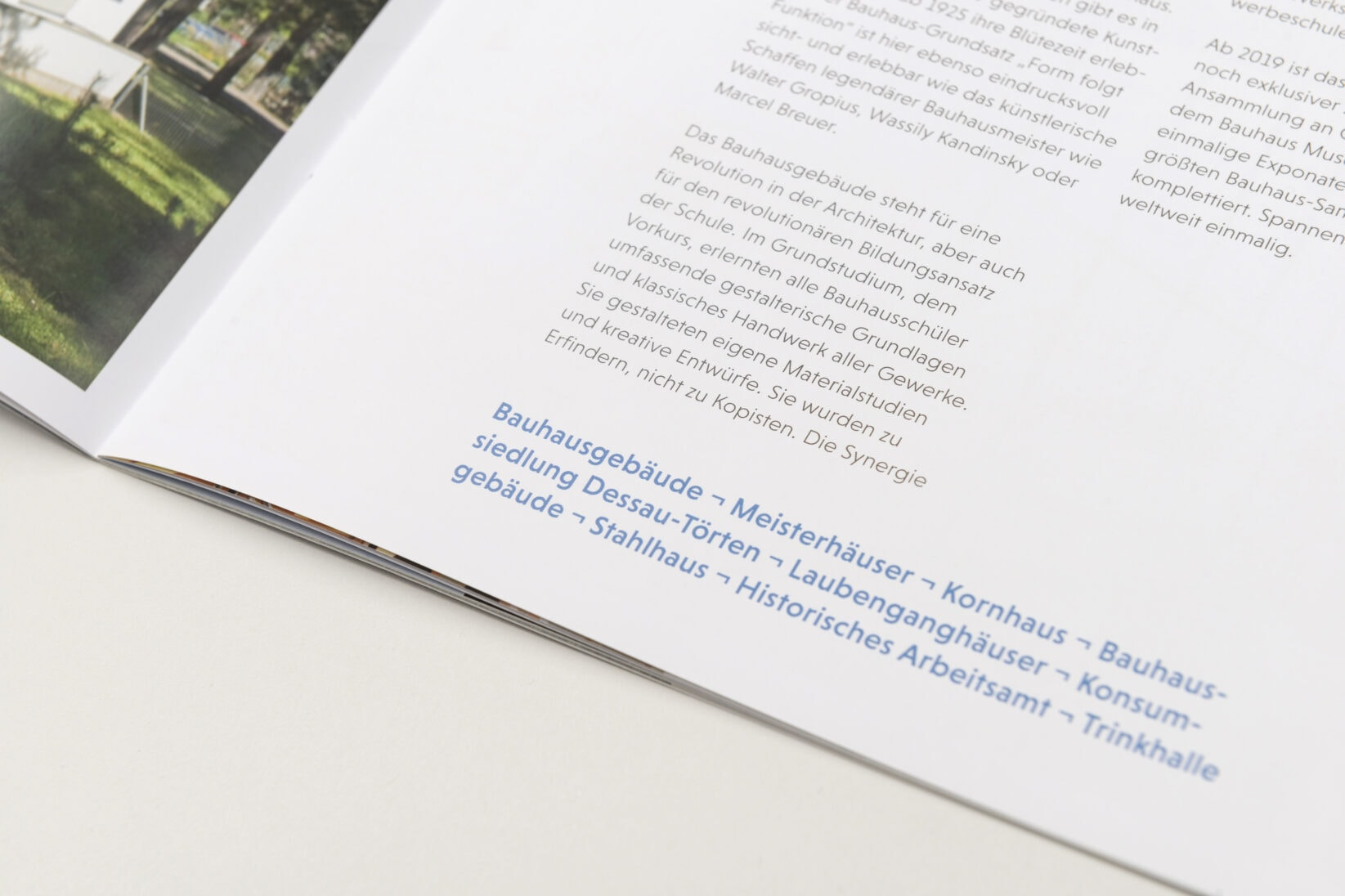Dessau-Rosslau Coporate Design Fakten