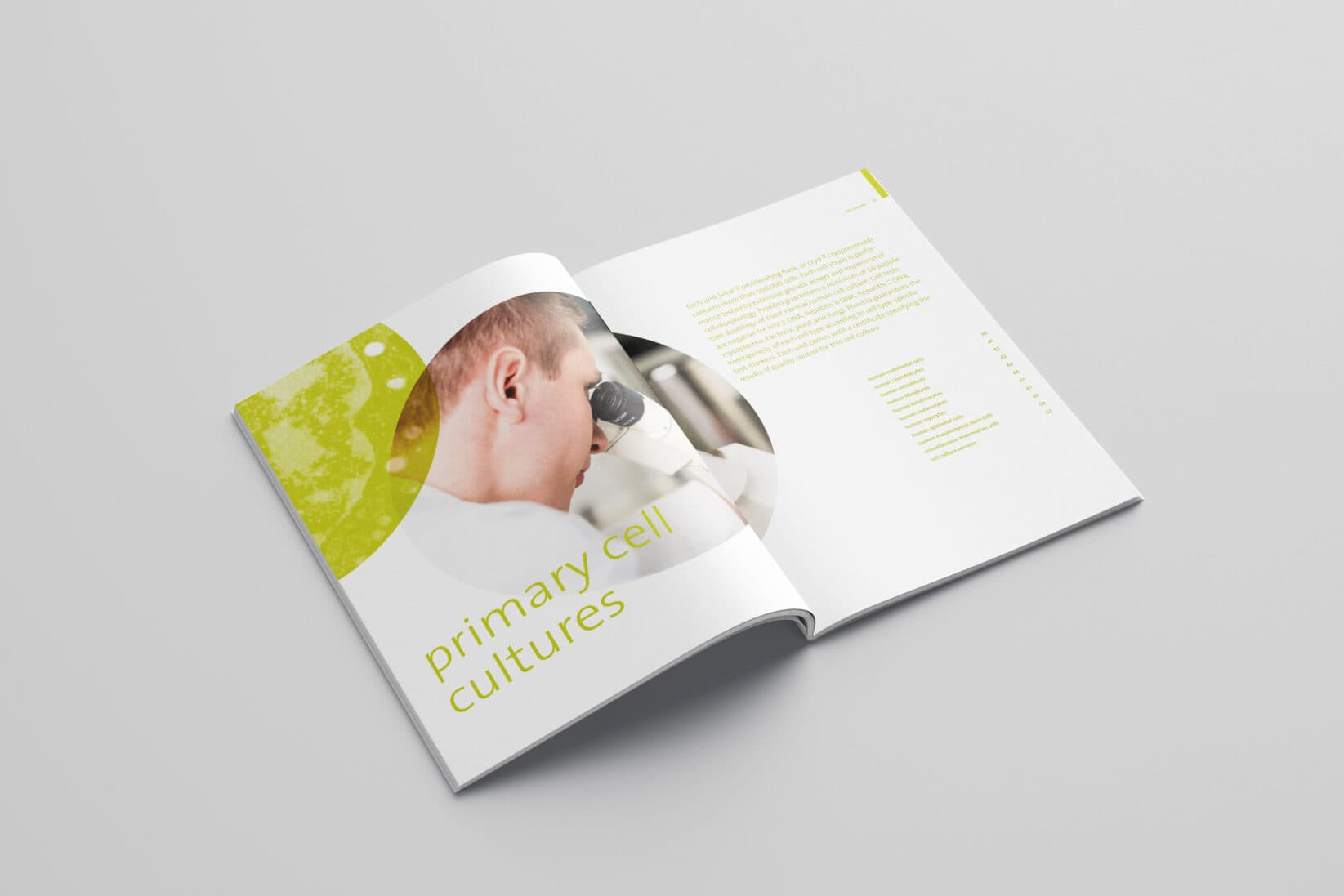 provitro Corporate Design Katalog Innenseite