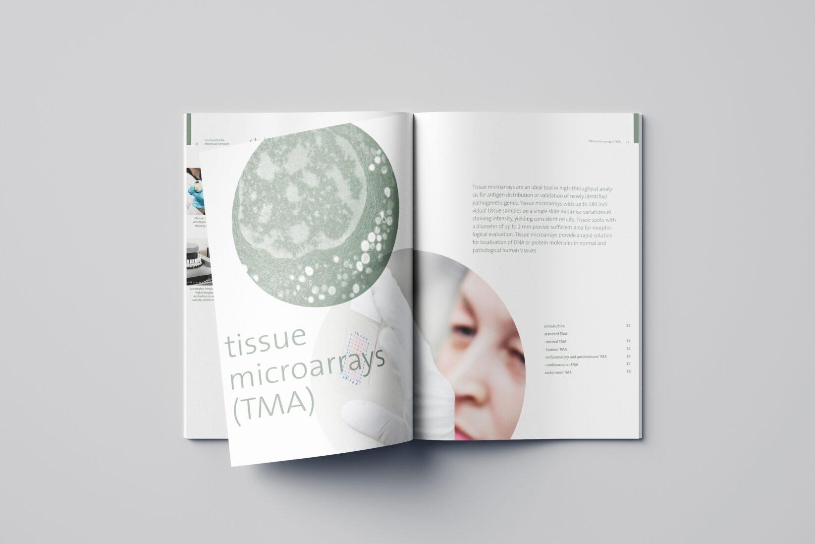 provitro Corporate Design Katalog Innenseite TMA